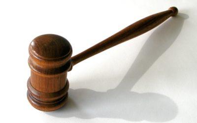 2. Tribunal Constitucional